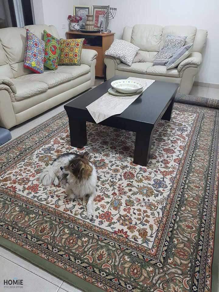 שטיח קלאסי לסלון בצבע ירוק