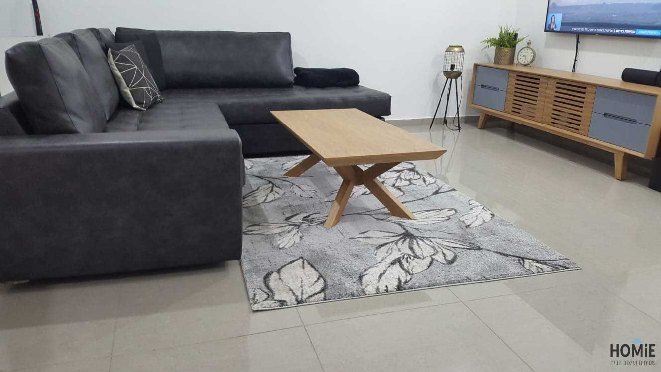 שטיח אפור מודרני וכרית נוי תואמת
